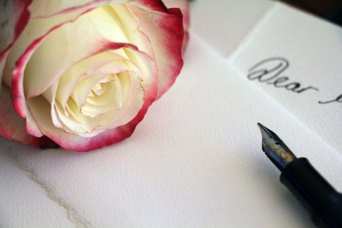 pale-rose-1452656_1920
